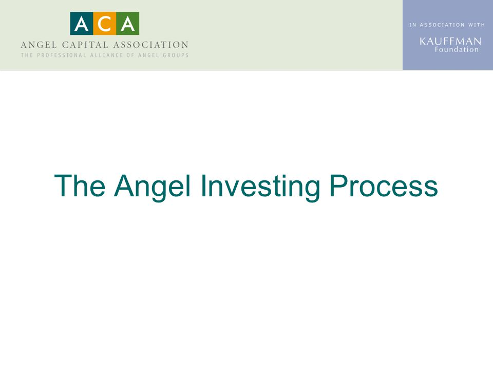 The Angel Investing Process