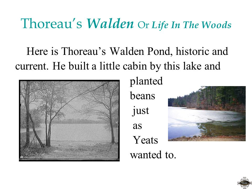 Thoreau's Walden Or Life In The Woods Here is Thoreau's Walden Pond, historic and current.