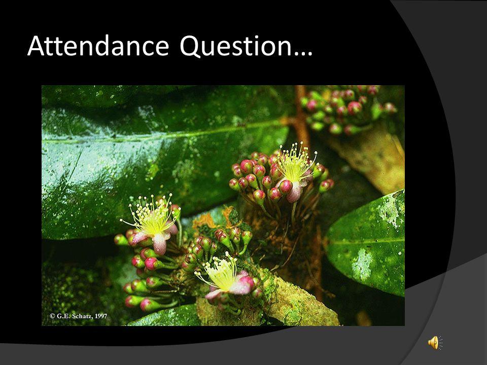 Attendance Question…