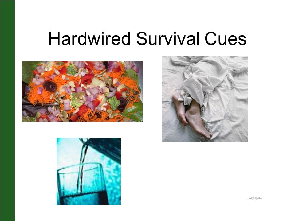 Hardwired Survival Cues