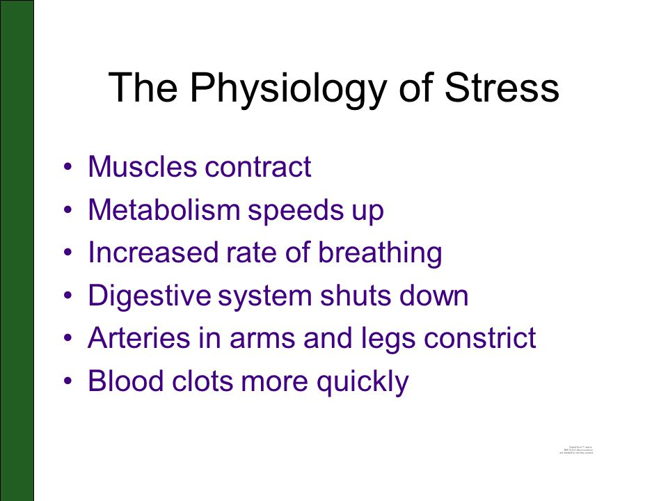 The Physiology of Stress Muscles contract Metabolism speeds up Increased rate of breathing Digestive system shuts down Arteries in arms and legs constrict Blood clots more quickly