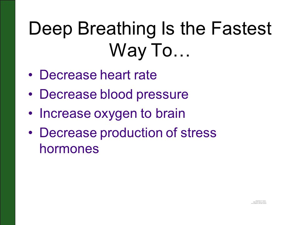 Deep Breathing Is the Fastest Way To… Decrease heart rate Decrease blood pressure Increase oxygen to brain Decrease production of stress hormones
