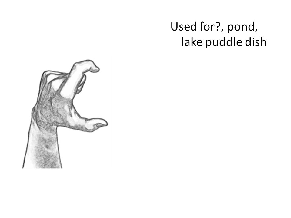 Used for , pond, lake puddle dish