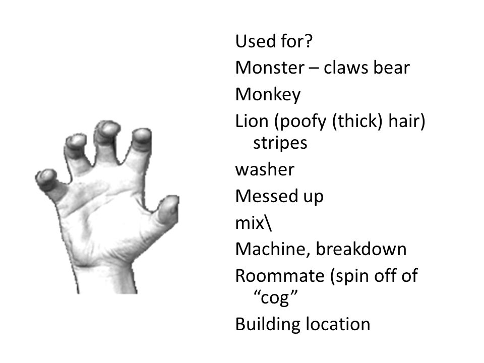 "Used for? Monster – claws bear Monkey Lion (poofy (thick) hair) stripes washer Messed up mix\ Machine, breakdown Roommate (spin off of ""cog"" Building"