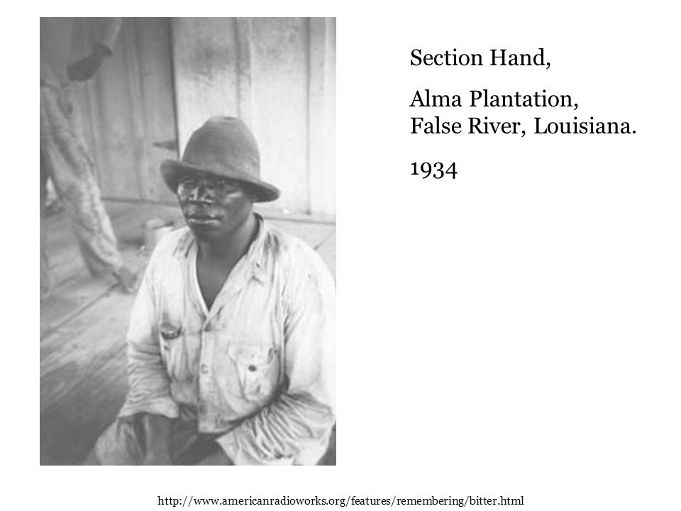 Section Hand, Alma Plantation, False River, Louisiana.
