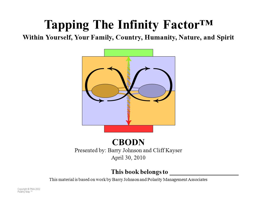 Copyright © PMA 2002 Polarity Map ™ 1 The Infinity Factor The energy system within all interdependency in life.