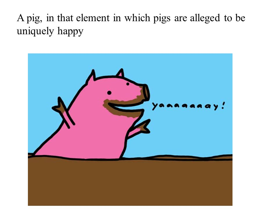 A pig, in that element in which pigs are alleged to be uniquely happy