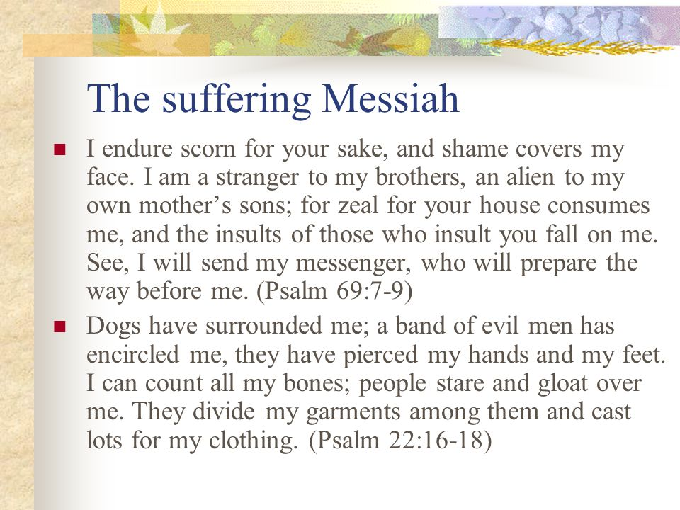 The suffering Messiah I endure scorn for your sake, and shame covers my face.