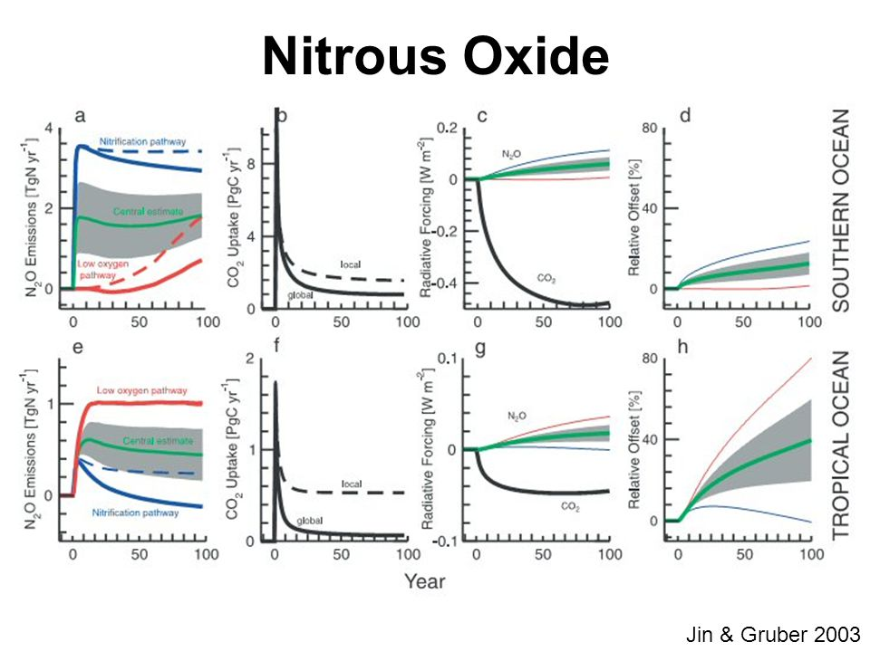 Jin & Gruber 2003 Nitrous Oxide