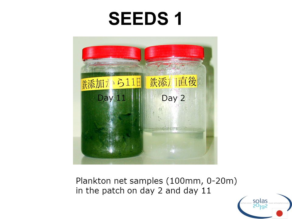 SEEDS 1 Plankton net samples (100mm, 0-20m) in the patch on day 2 and day 11 Day 11 Day 2