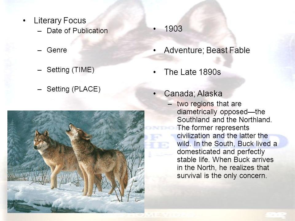 Literary Focus, Con't –Themes and Conflicts Survival Cruelty of Nature Survival of the Fittest Quest for Alpha Dog Status Primitive Instincts Rugged Individualism Freedom and Solitary Life Civilization vs.
