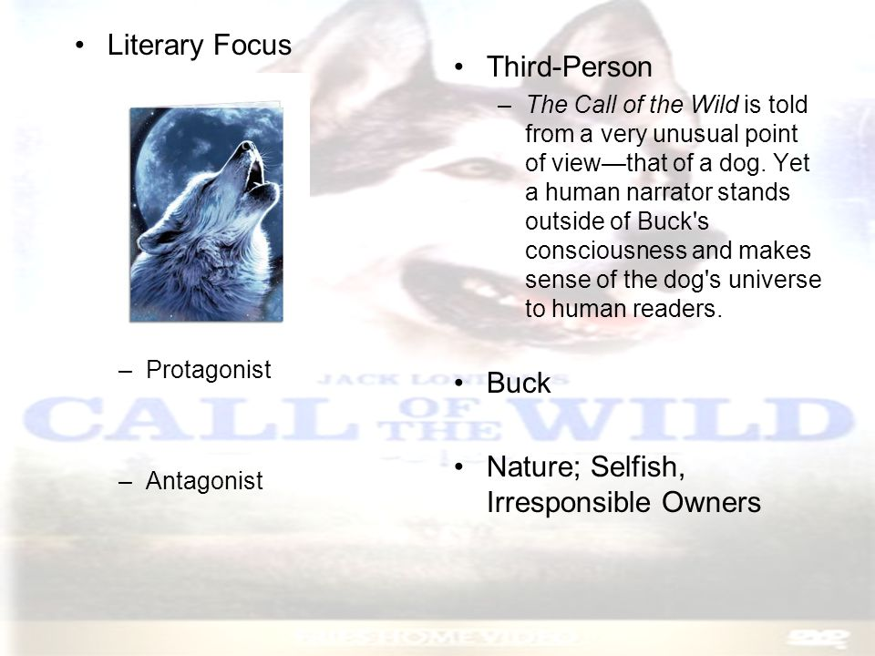 Characters –Buck A powerful dog, who feels the call of the wild Buck is stolen from the California estate and sold as a sled dog in the Arctic Buck evolves from a pampered pet into a fierce, masterful animal, a survivor in the cruel Northern wilderness
