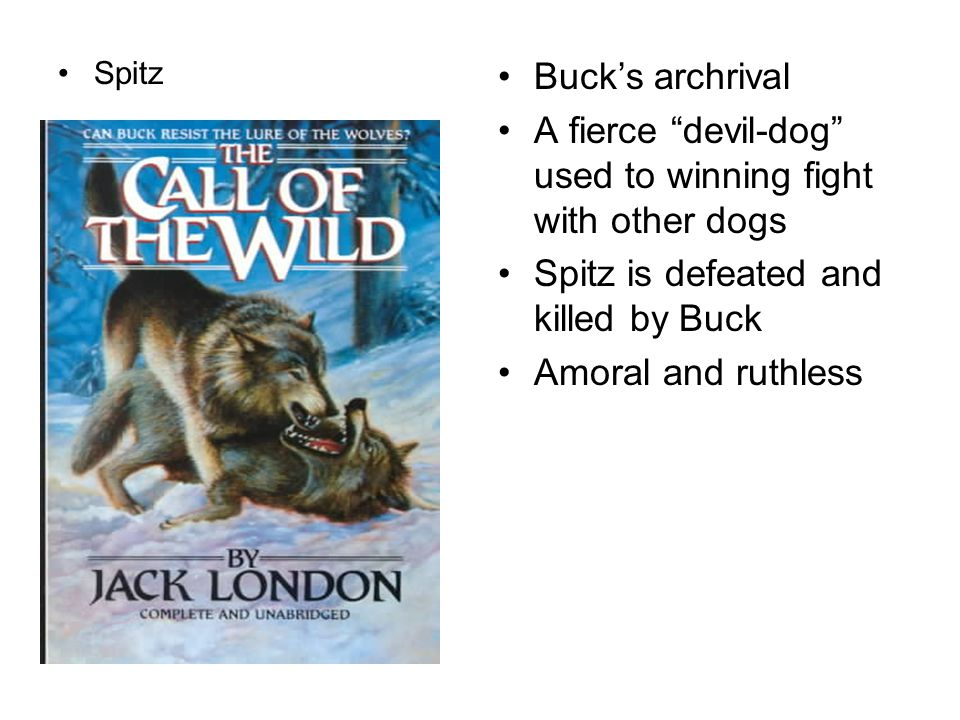 "Spitz Buck's archrival A fierce ""devil-dog"" used to winning fight with other dogs Spitz is defeated and killed by Buck Amoral and ruthless"