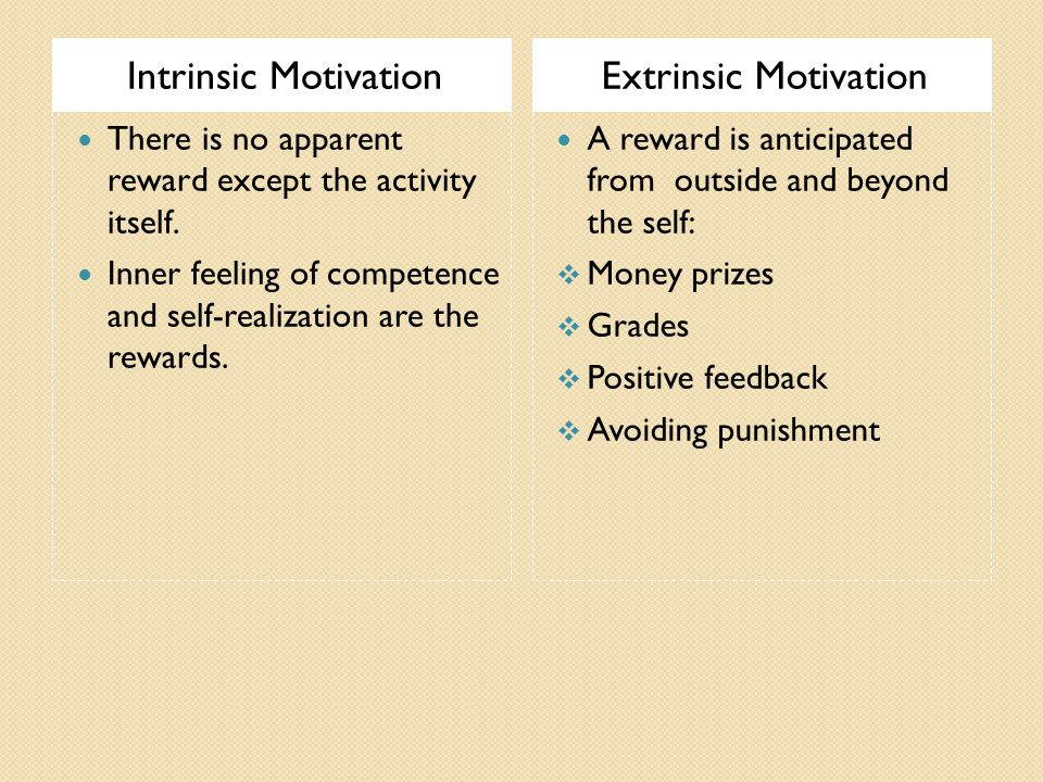 Intrinsic MotivationExtrinsic Motivation There is no apparent reward except the activity itself.