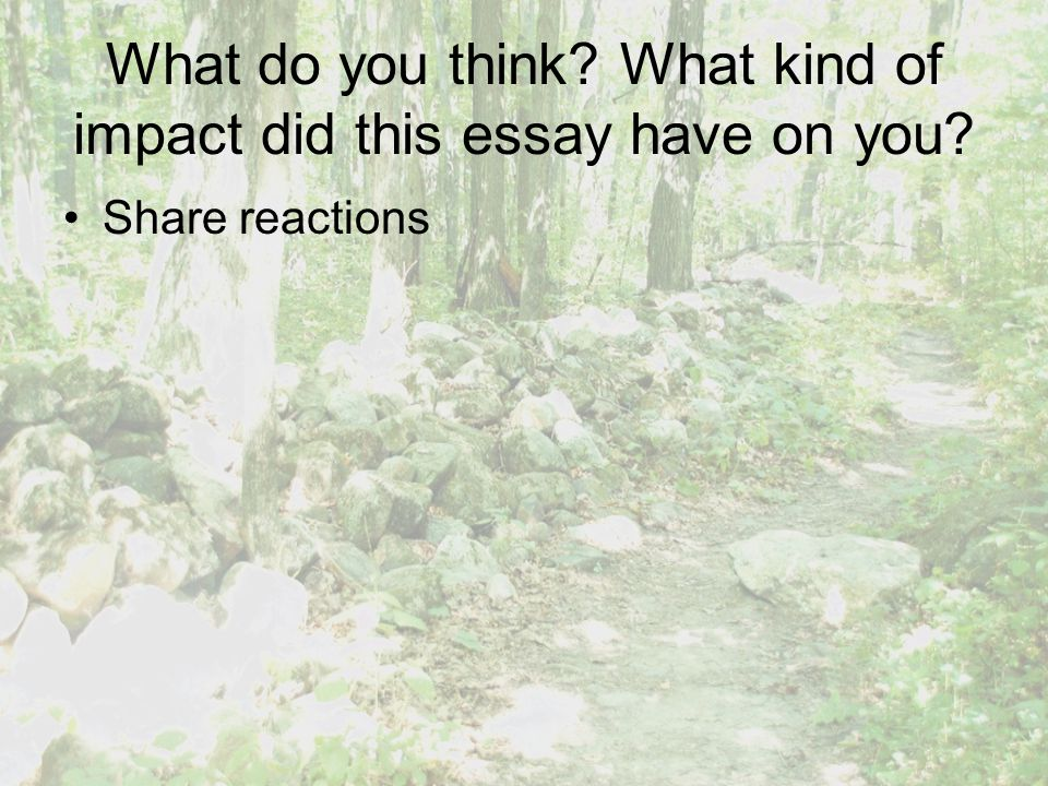 What do you think? What kind of impact did this essay have on you? Share reactions