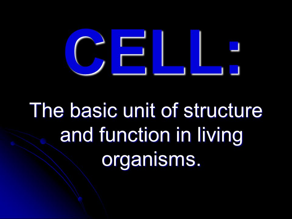 IS A LIVING CELL A SIMPLE THING.