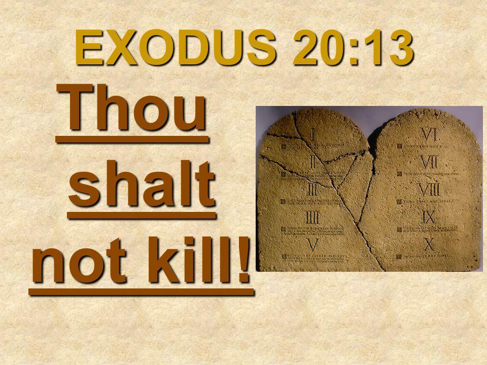 EXODUS 20:13 Thou shalt not kill!
