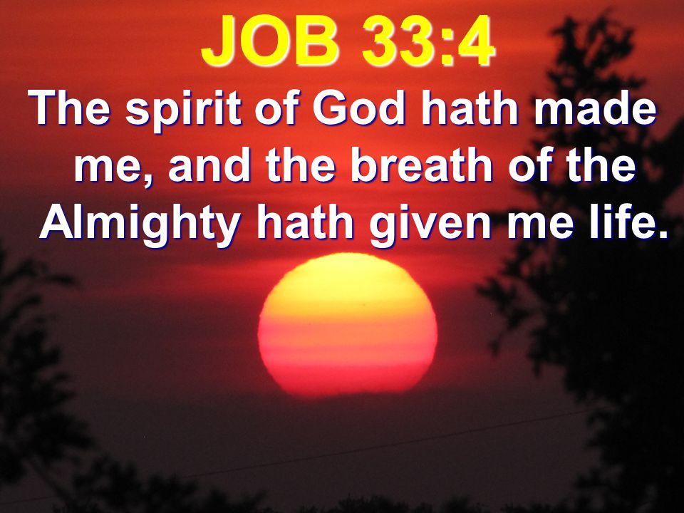 JOB 33:4 The spirit of God hath made me, and the breath of the Almighty hath given me life.