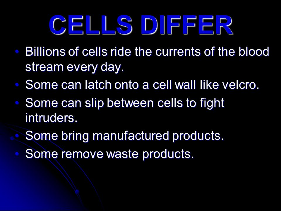 Billions of cells ride the currents of the blood stream every day.Billions of cells ride the currents of the blood stream every day. Some can latch on