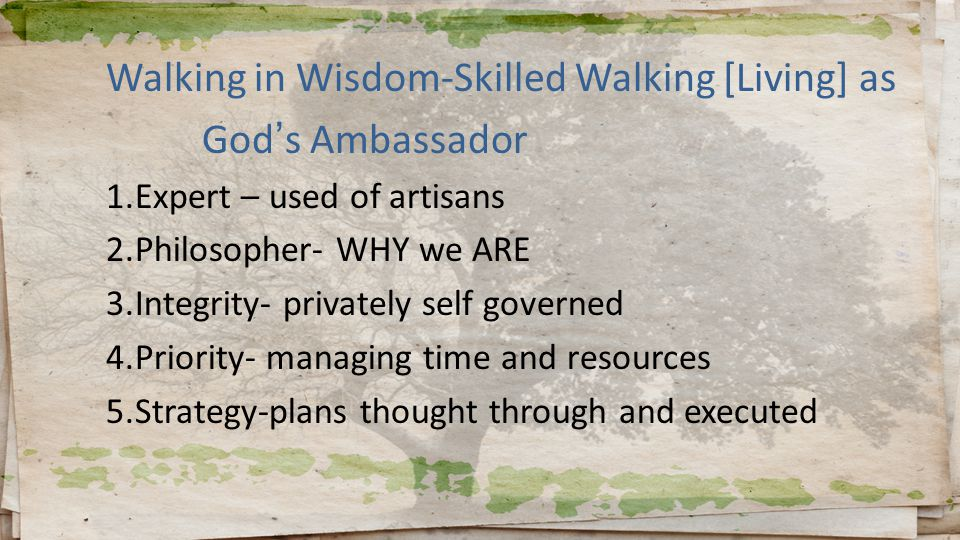Walking in Wisdom-Skilled Walking [Living] as God's Ambassador 1.Expert – used of artisans 2.Philosopher- WHY we ARE 3.Integrity- privately self governed 4.Priority- managing time and resources 5.Strategy-plans thought through and executed