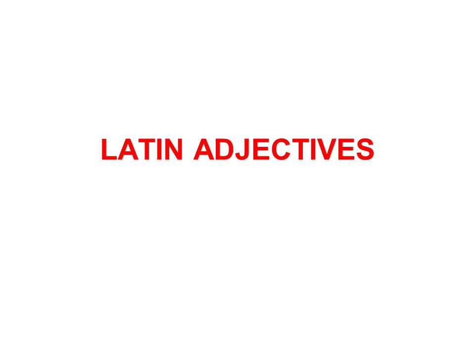 LATIN ADJECTIVES