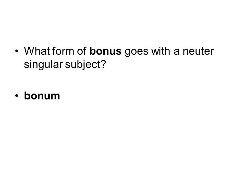 What form of bonus goes with a neuter singular subject bonum
