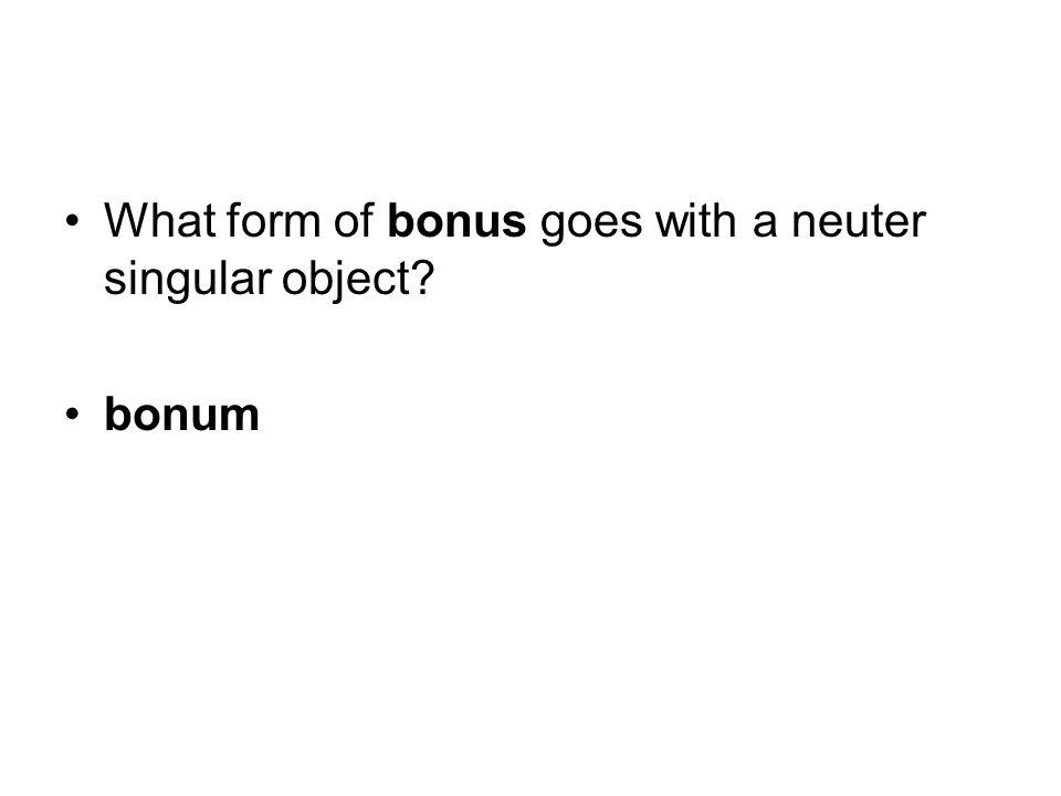 What form of bonus goes with a neuter singular object bonum