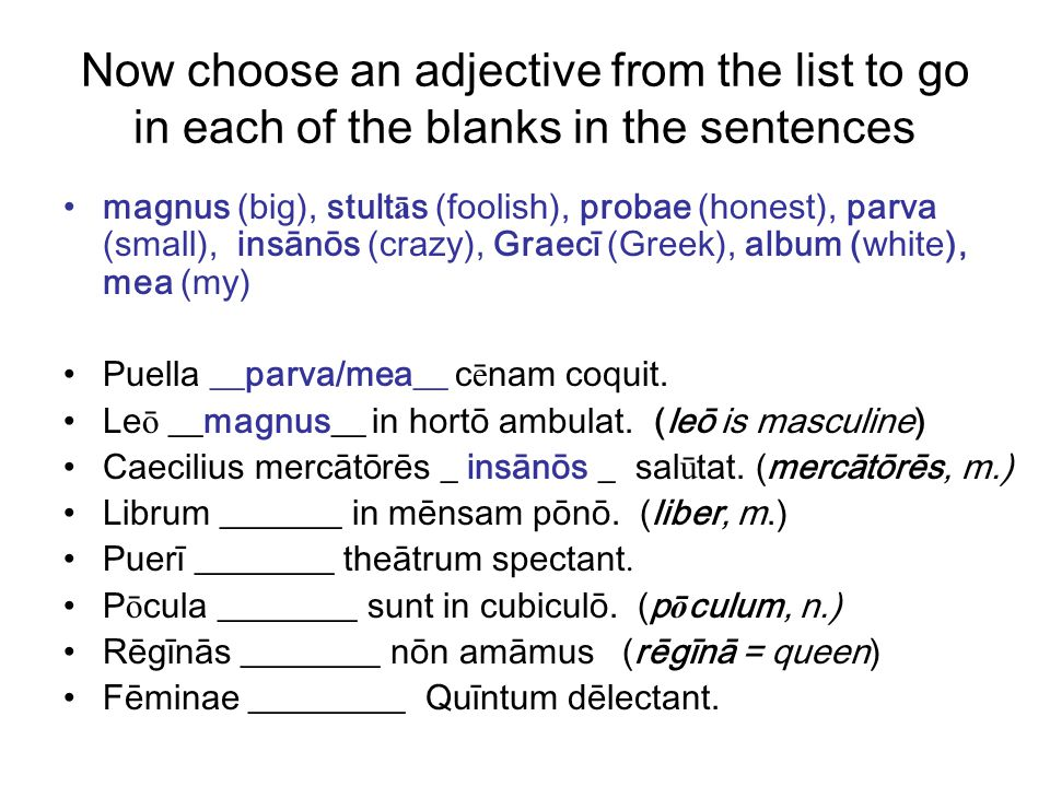 Now choose an adjective from the list to go in each of the blanks in the sentences magnus (big), stult ā s (foolish), probae (honest), parva (small), insānōs (crazy), Graecī (Greek), album (white), mea (my) Puella __parva/mea__ c ē nam coquit.