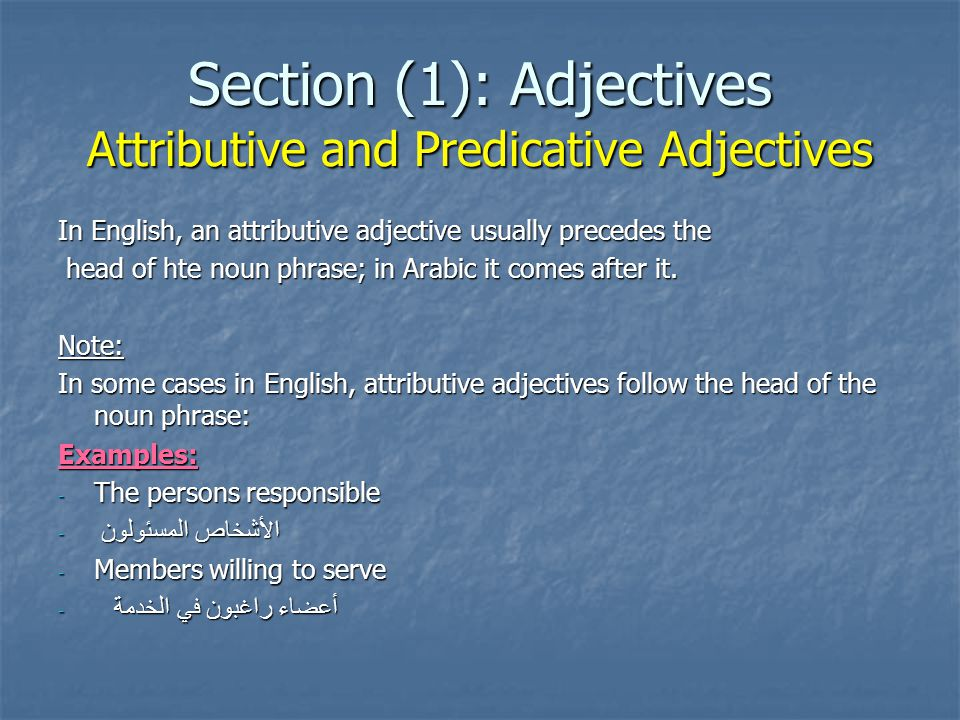 Section (1): Adjectives Attributive and Predicative Adjectives - Predicative adjectives complete or describe the subject or the object.