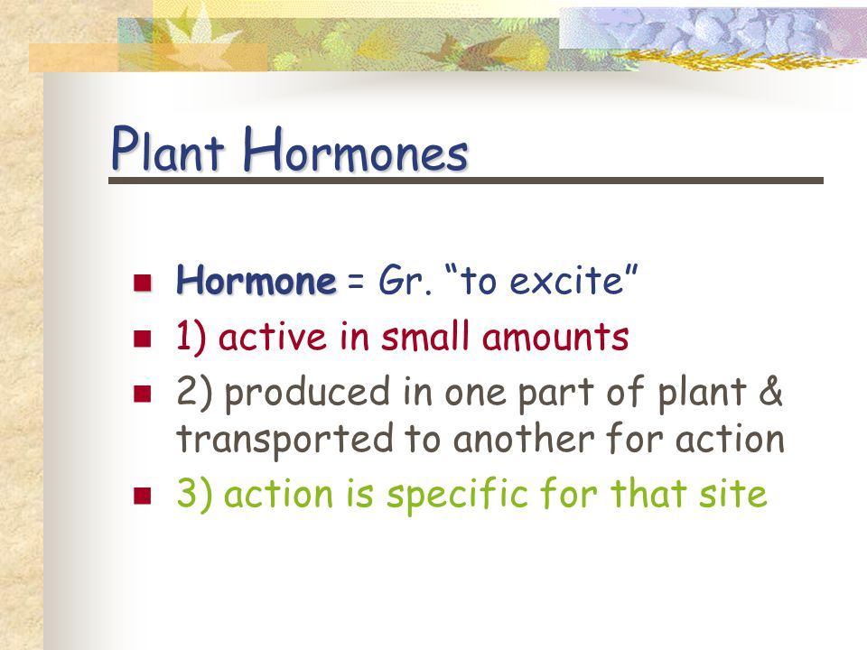 E ach has a M ultiplicity of E ffects Depending on site of action Developmental stage of plant Concentration of hormone