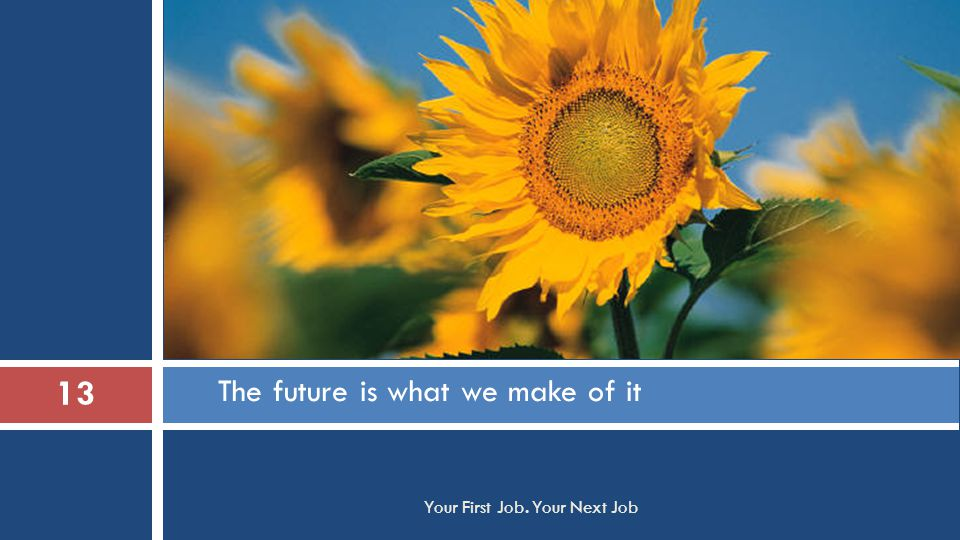 The future is what we make of it 13 Your First Job. Your Next Job