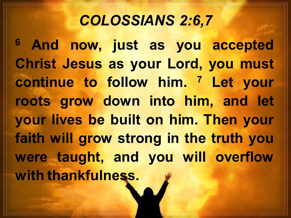 6 And now, just as you accepted Christ Jesus as your Lord, you must continue to follow him.