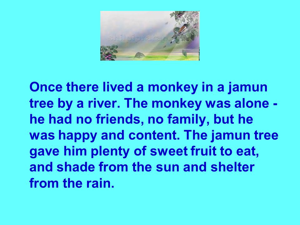 Once there lived a monkey in a jamun tree by a river.