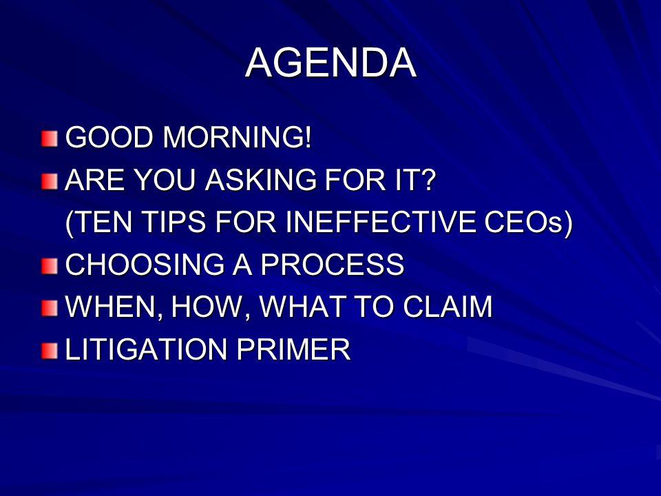 Litigation Primer