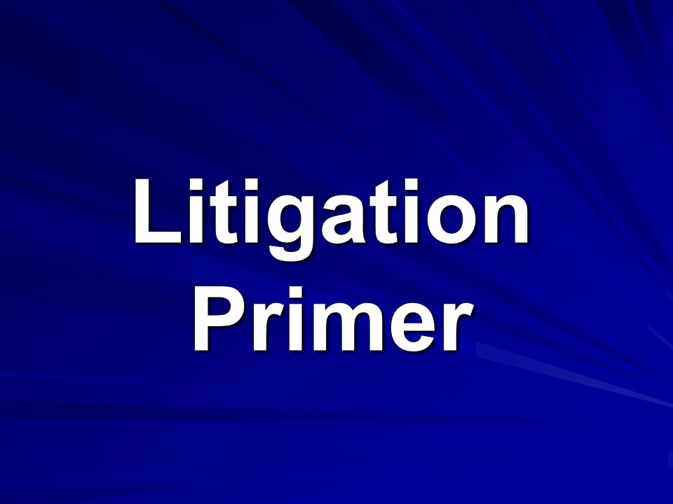 Litigation Primer