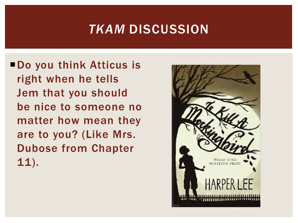  Do you think Atticus is right when he tells Jem that you should be nice to someone no matter how mean they are to you.