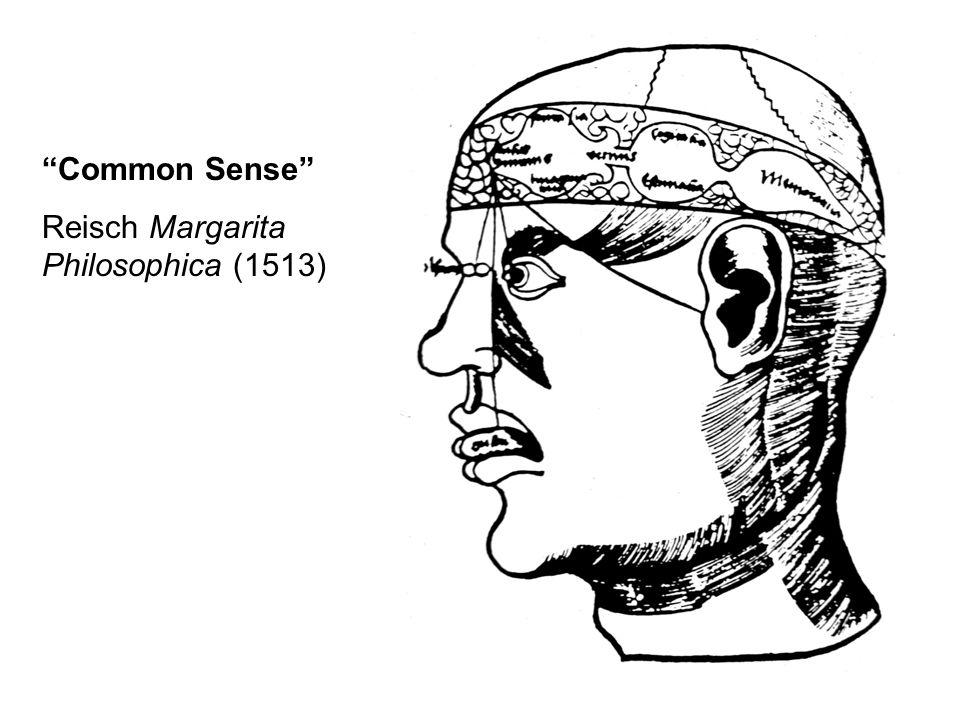 Common Sense Reisch Margarita Philosophica (1513)