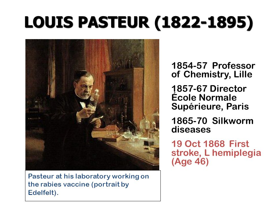 1854-57 Professor of Chemistry, Lille 1857-67 Director École Normale Supérieure, Paris 1865-70 Silkworm diseases 19 Oct 1868 First stroke, L hemiplegia (Age 46) Pasteur at his laboratory working on the rabies vaccine (portrait by Edelfelt).