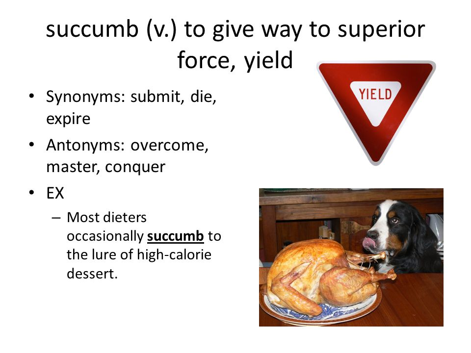 succumb (v.) to give way to superior force, yield Synonyms: submit, die, expire Antonyms: overcome, master, conquer EX – Most dieters occasionally succumb to the lure of high-calorie dessert.