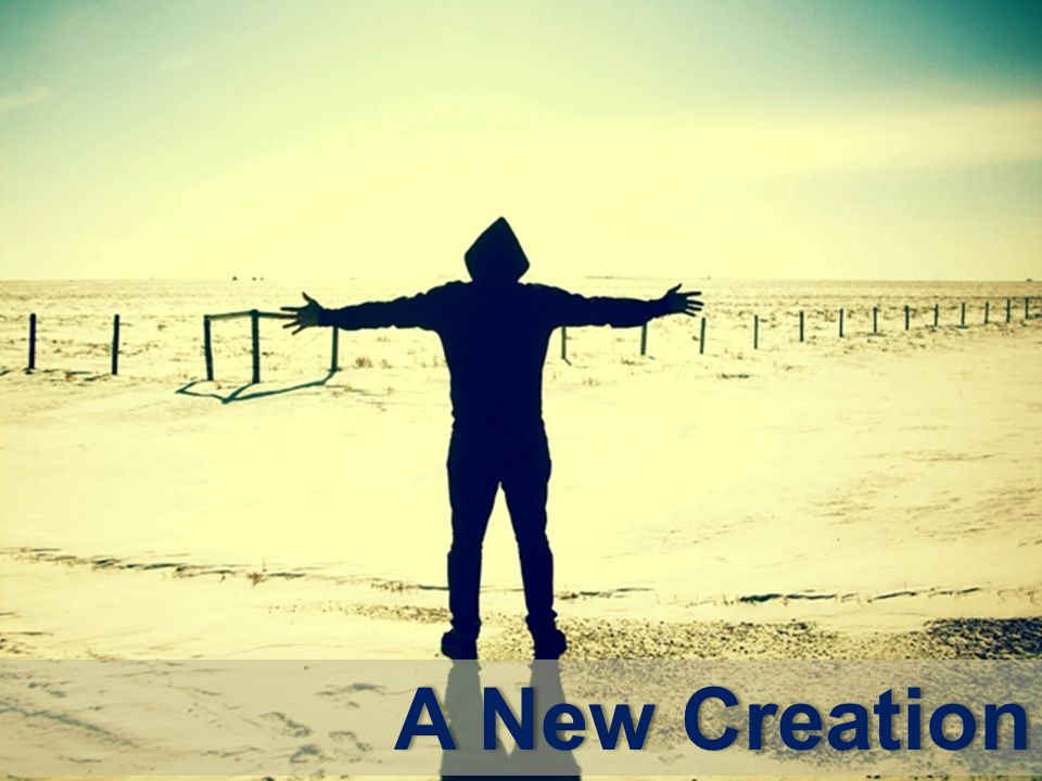 A New CreationA New Creation