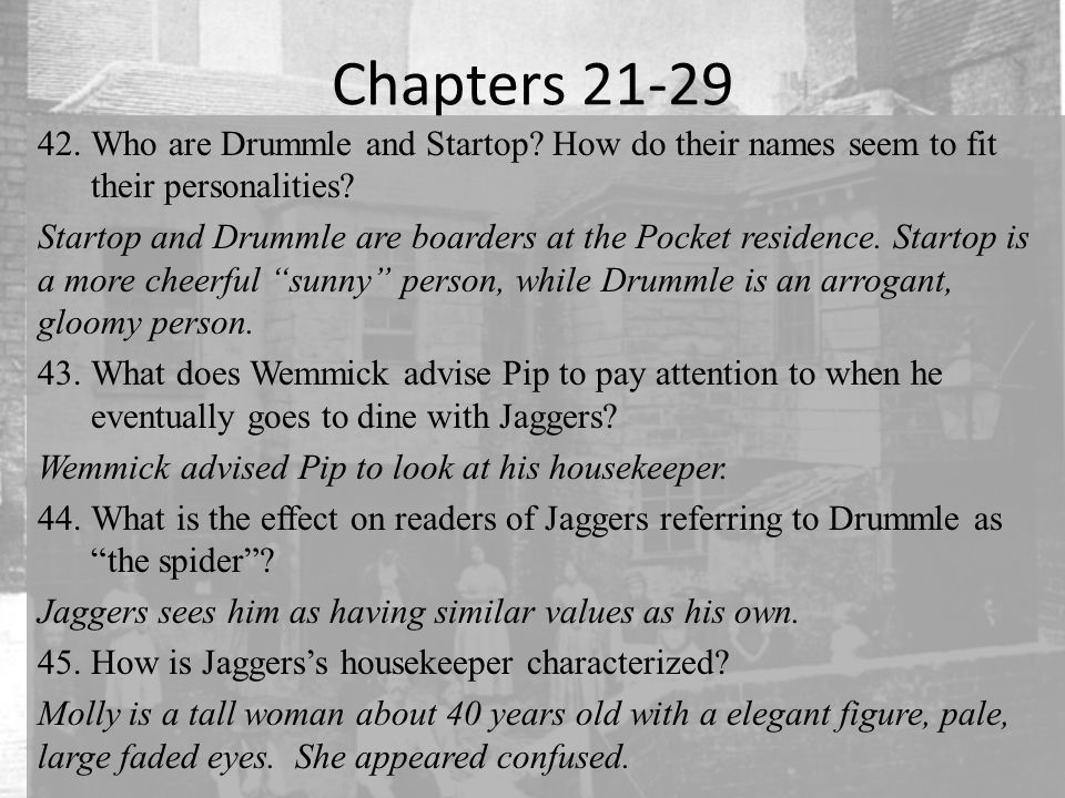 Chapters 21-29 42.Who are Drummle and Startop. How do their names seem to fit their personalities.