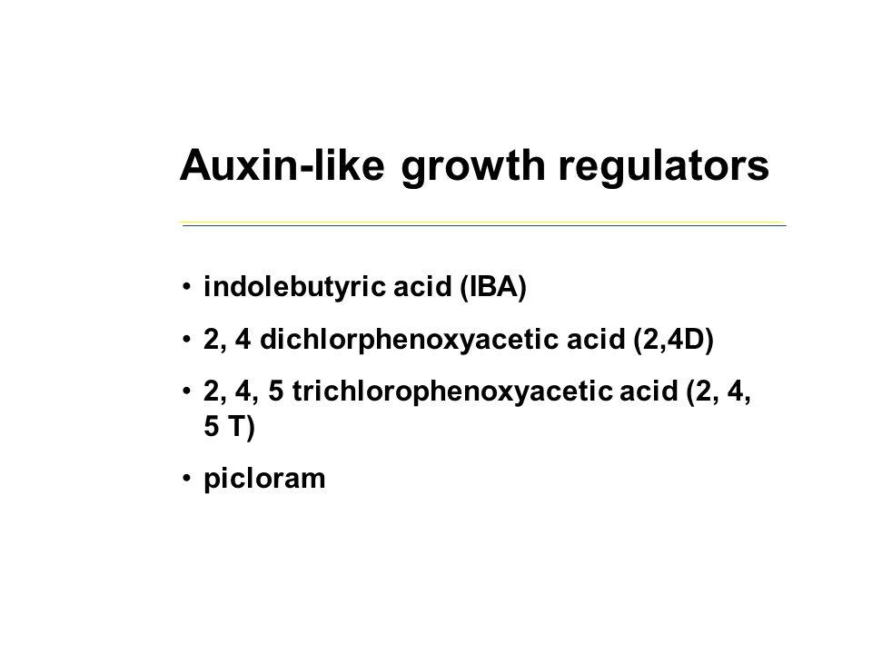 Auxin-like growth regulators indolebutyric acid (IBA) 2, 4 dichlorphenoxyacetic acid (2,4D) 2, 4, 5 trichlorophenoxyacetic acid (2, 4, 5 T) picloram