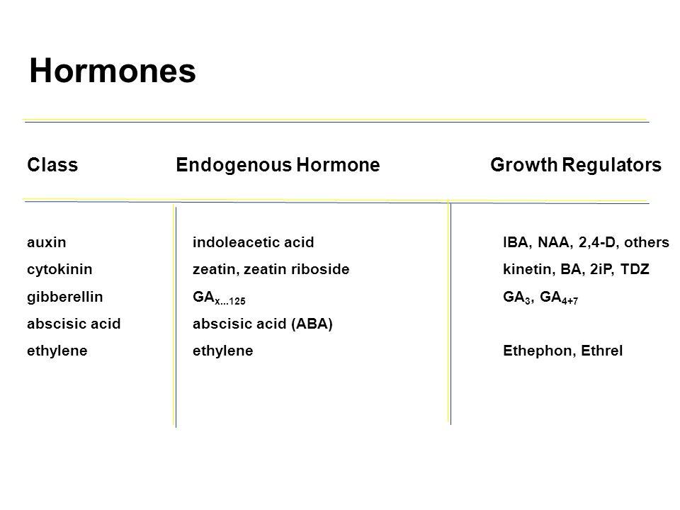 ClassEndogenous HormoneGrowth Regulators auxinindoleacetic acidIBA, NAA, 2,4-D, others cytokininzeatin, zeatin ribosidekinetin, BA, 2iP, TDZ gibberell