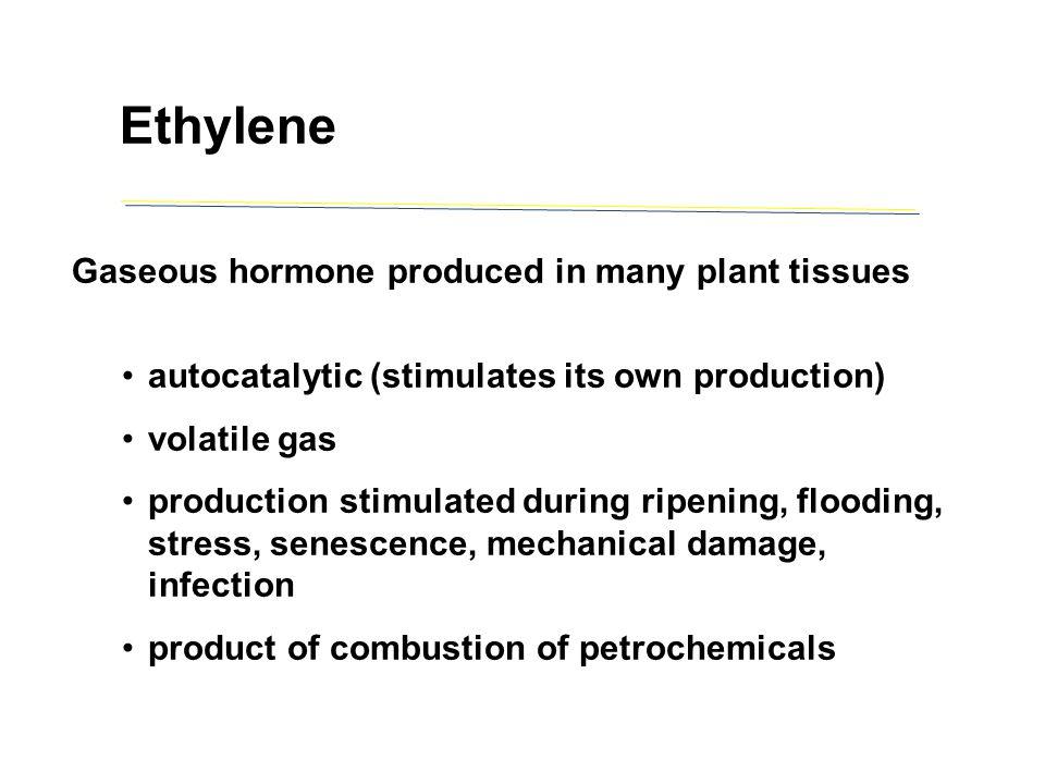 autocatalytic (stimulates its own production) volatile gas production stimulated during ripening, flooding, stress, senescence, mechanical damage, inf