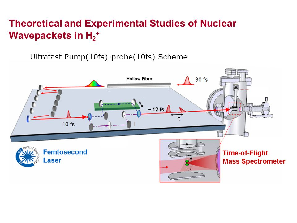 Ultrafast Pump(10fs)-probe(10fs) Scheme Theoretical and Experimental Studies of Nuclear Wavepackets in H 2 +