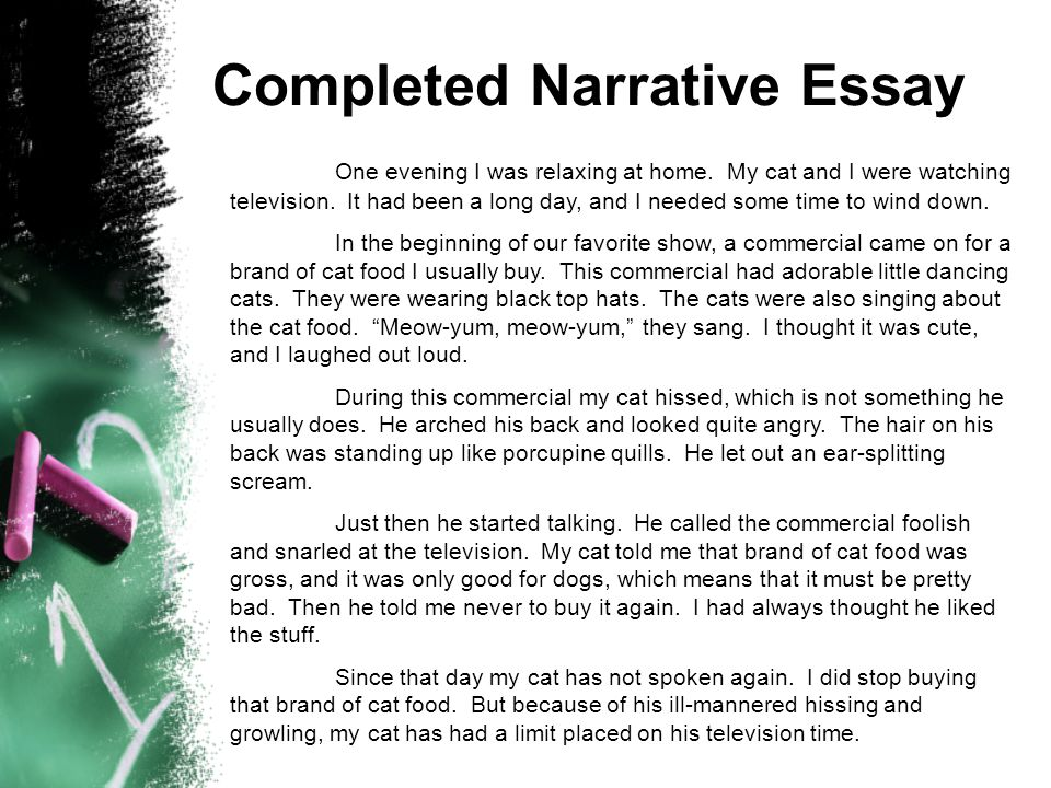 Completed Narrative Essay One evening I was relaxing at home. My cat and I were watching television. It had been a long day, and I needed some time to
