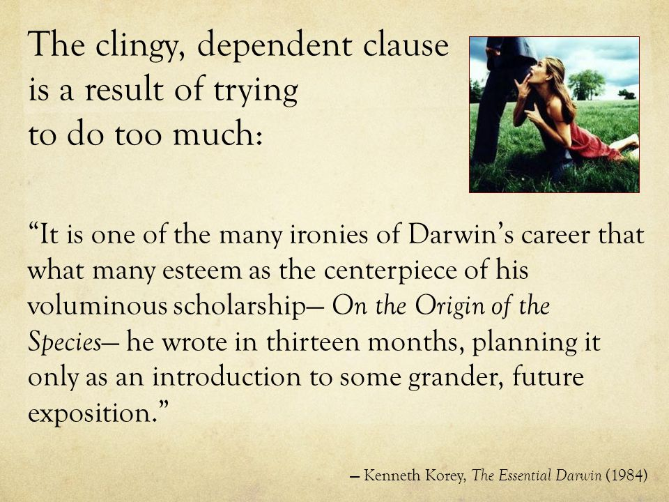 The clingy, dependent clause is a result of trying to do too much: It is one of the many ironies of Darwin's career that what many esteem as the centerpiece of his voluminous scholarship— On the Origin of the Species — he wrote in thirteen months, planning it only as an introduction to some grander, future exposition. — Kenneth Korey, The Essential Darwin (1984)