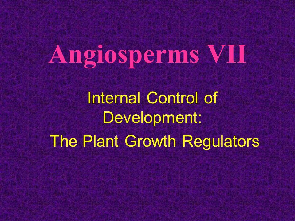 Angiosperms VII Internal Control of Development: The Plant Growth Regulators