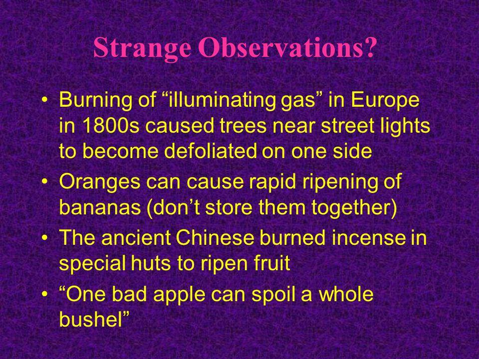 Strange Observations.