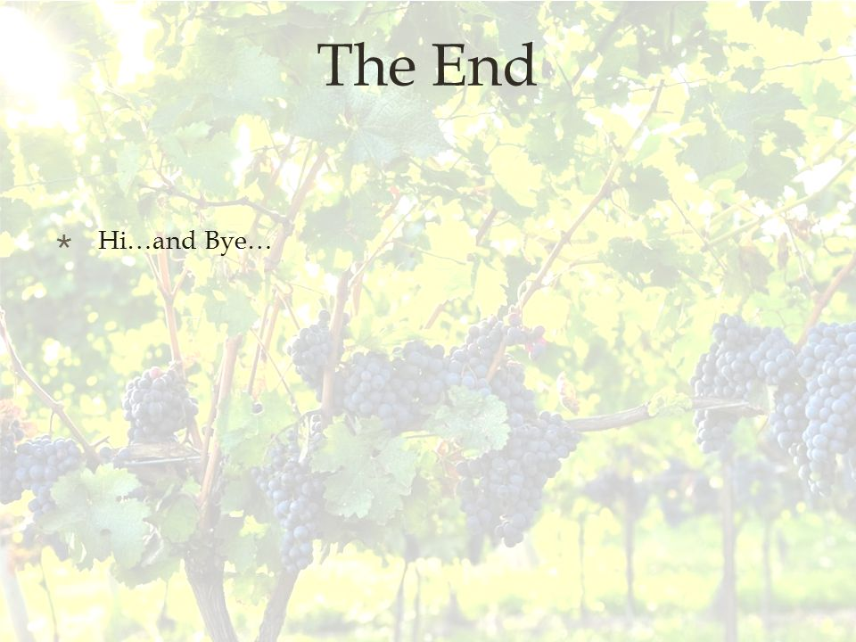 The End  Hi…and Bye…